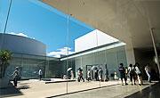 観光 スポット 21世紀美術館