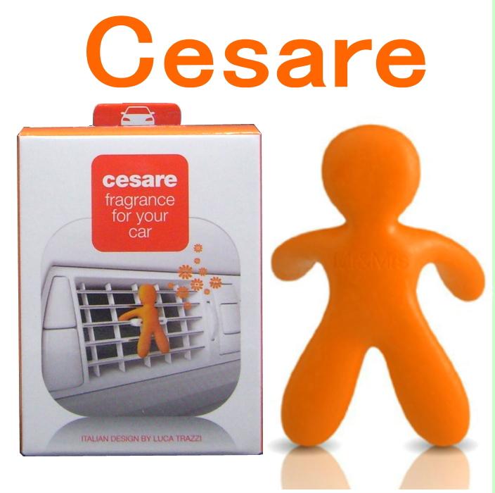 Mr&Mrs CESARE(車用)チェザーレ ミスター&ミセス オレンジエナジー