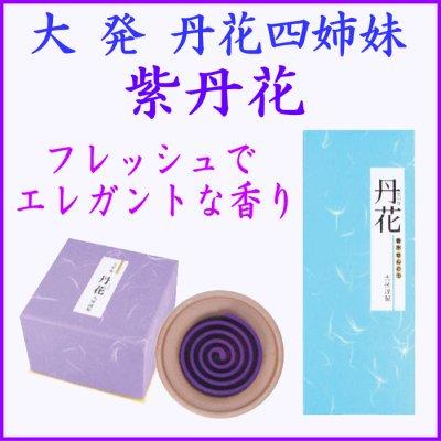 画像1: 紫丹花 大発 (1)