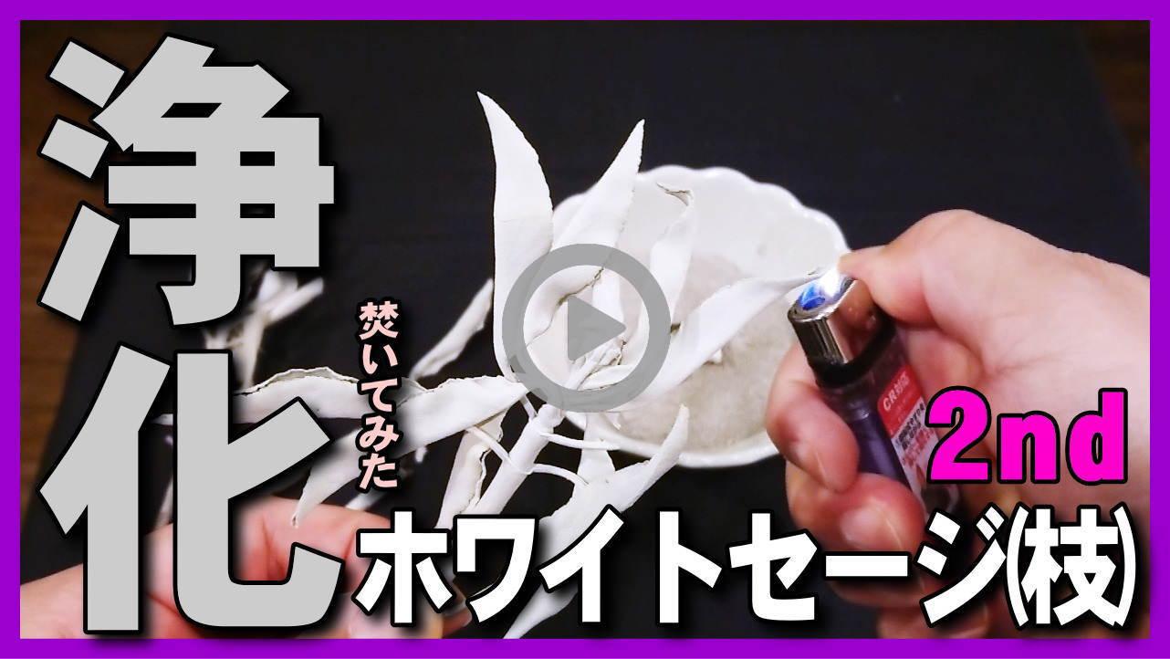【浄化・ホワイトセージ2nd】ホワイトセージ枝付きのオススメの焚き方・方法・使い方・燃やし方と香り・パワーストーン浄化に
