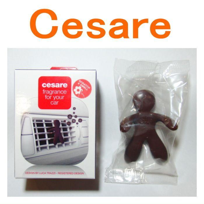 Mr&Mrs CESARE(車用)チェザーレ ミスター&ミセス フクシャ ブラウン トランキュリティ