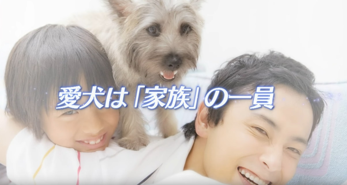 愛犬 家族 一員