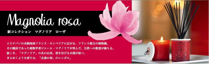 Magnolia Rosa マグノリア ローザ