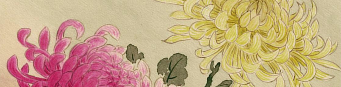 日本香堂・大江戸香・江戸の香り 長寿菊花