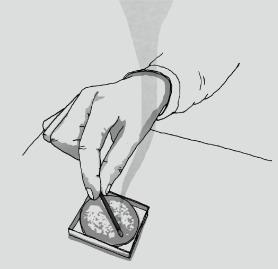 hibi 10minutes aroma マッチのお香 設置